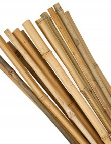 16399-Bamboo-Canes